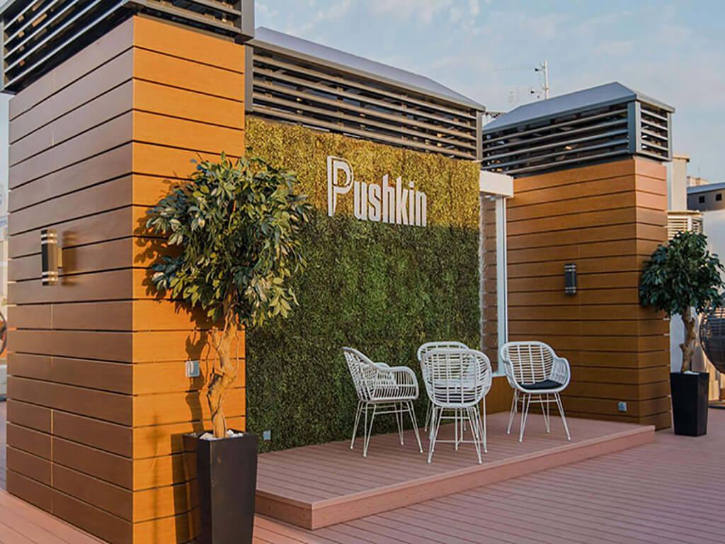 pushkin9